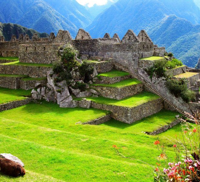 Centre_de_Machu_Picchu___Machu_Picchu_Inner_Courtyard_Wallpaper_92es6